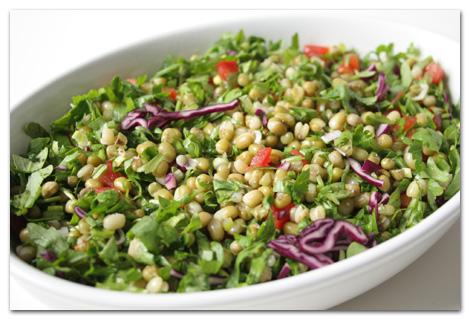 mungobohnensalat1.jpg